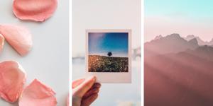 ingyenes stock fotók pexels